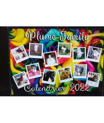 Calendrier Plume Family...